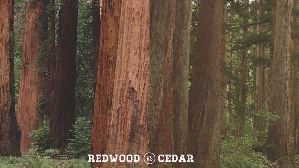 Redwood Vs Cedar >> Redwood Vs Cedar Timbertown