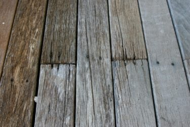 Graying Wood Deck