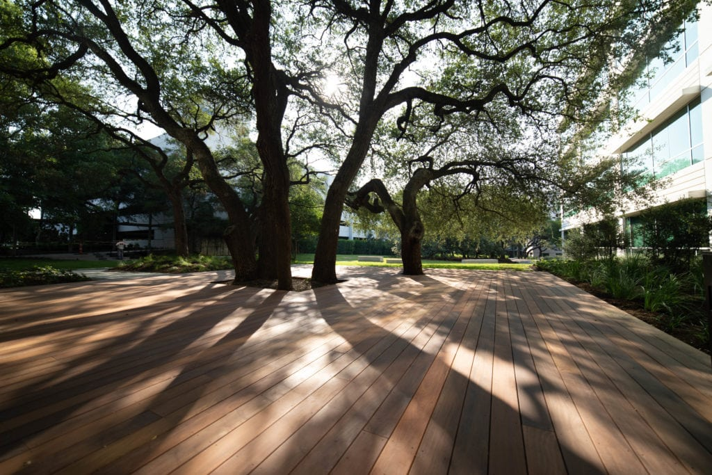 Commercial Ipe Deck with Trees